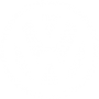 volkswagen-256